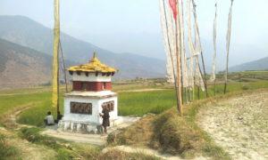 Chorten Butao Puanakha 046 md