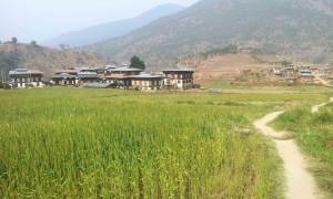Chorten Butao Punakha