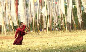 Chorten Butao Punakha 82 md