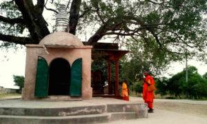 Chorten India Sankisa 717 md
