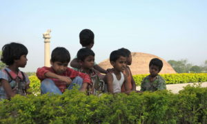 Chorten India Vaishali 42 md