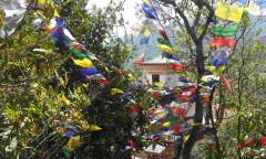 Chorten Nepal Kathmandu Pharphing -md