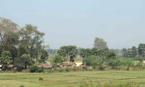 Chorten Rajgir Nalanda 73 p md