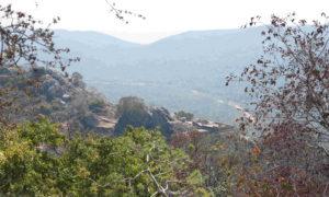 Chorten Rajgir Vultures Peak - md