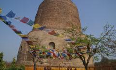 Chorten Sarnath