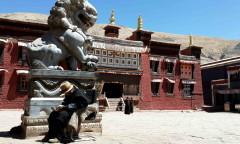 Chorten Tibete Sakya - p md