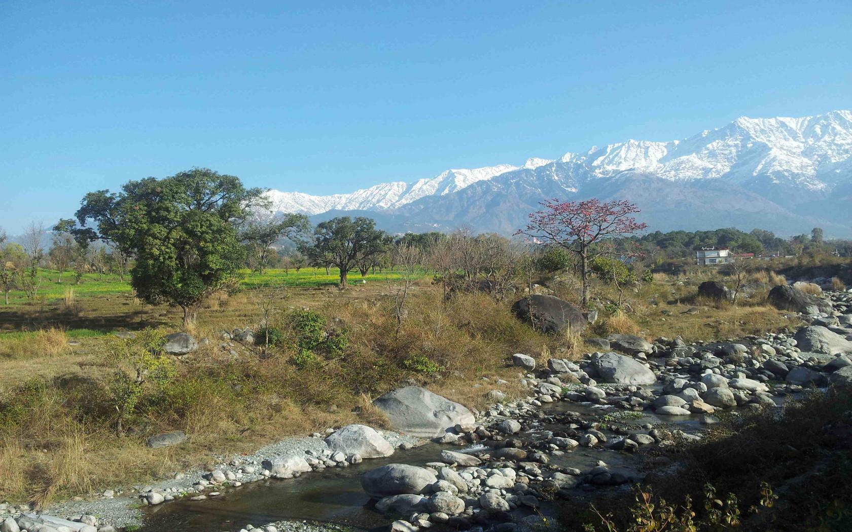 Experiências e objetivo de Dharamsala e Tso Pema