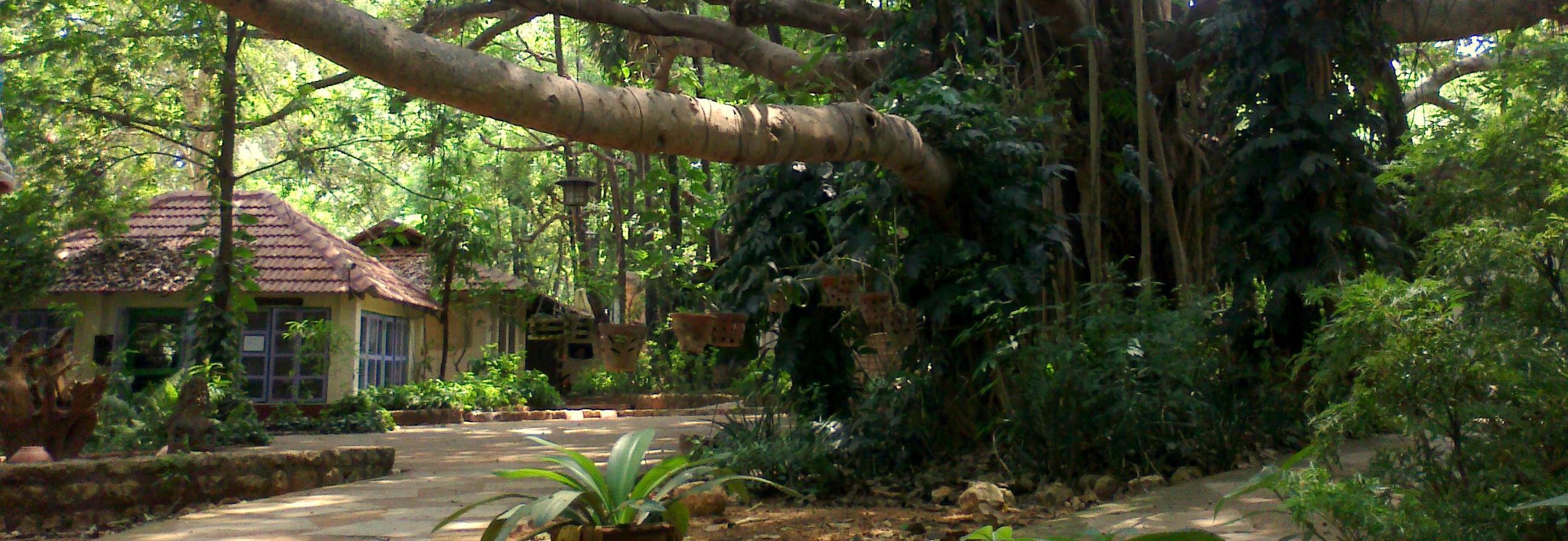 Auroville e Norte da Índia