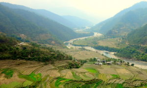 Chorten Punakha 8 md