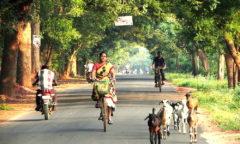 Chorten India Auroville roads