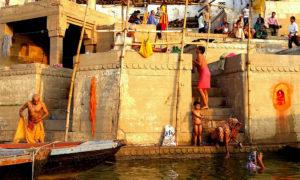 Chorten Varanasi 628 corte 8 v8 md
