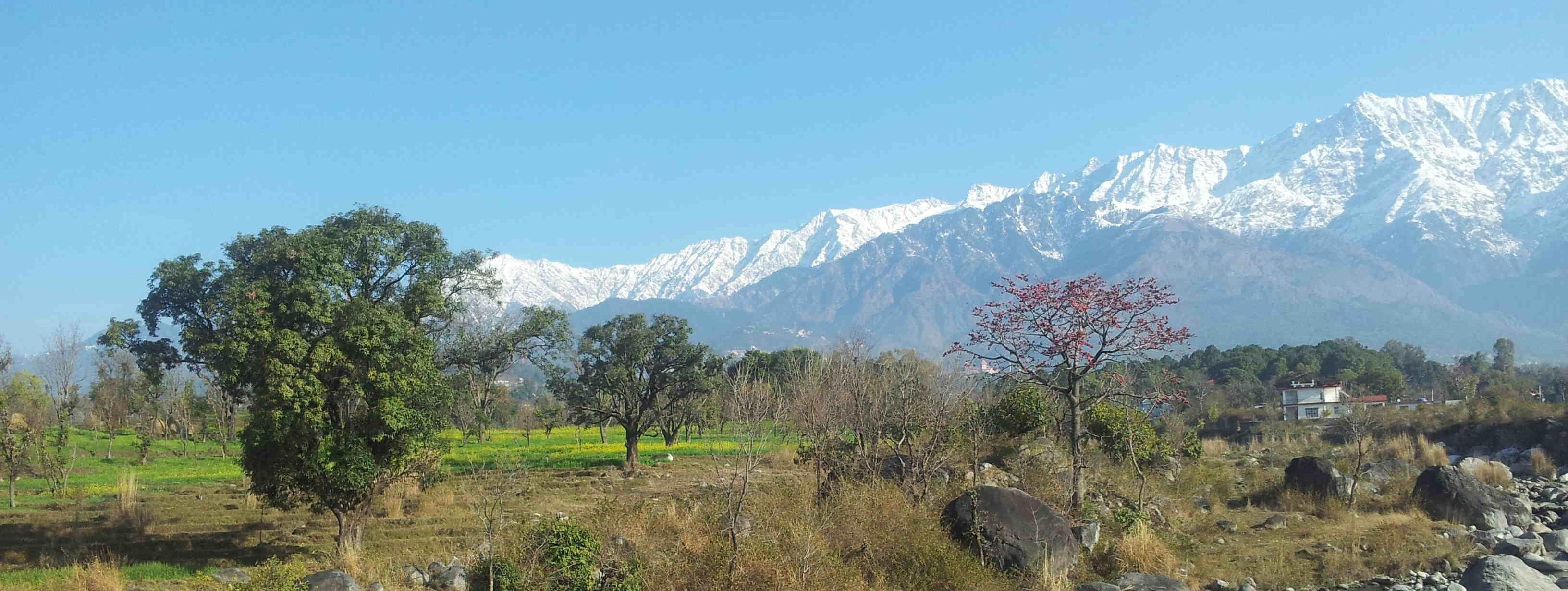 Viagem Experiências e Objetivo em Dharamsala e Tso Pema